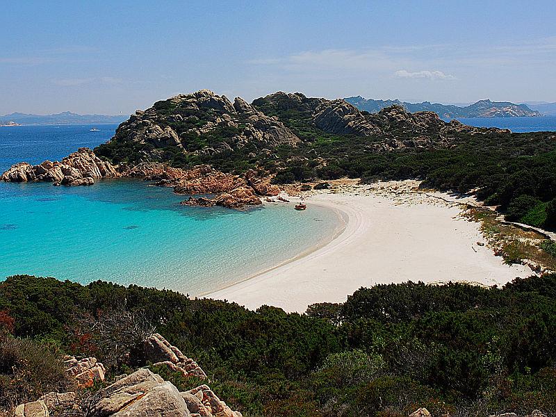 Sardegna: un paradiso per gli animali