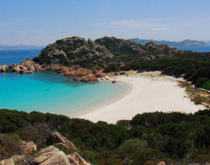 Meravigliosa spiaggia rosa della Sardegna