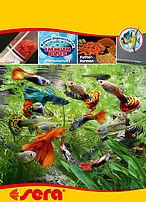 alimentazione secondo natura in acquario
