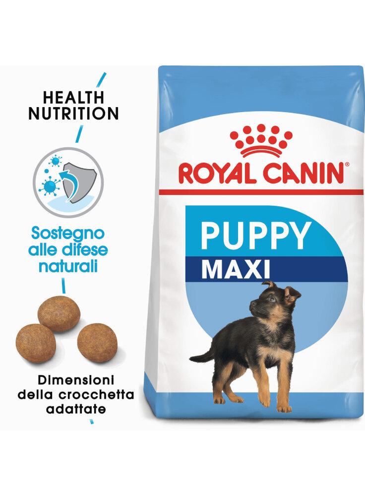 Maxi Puppy cane Royal Canin