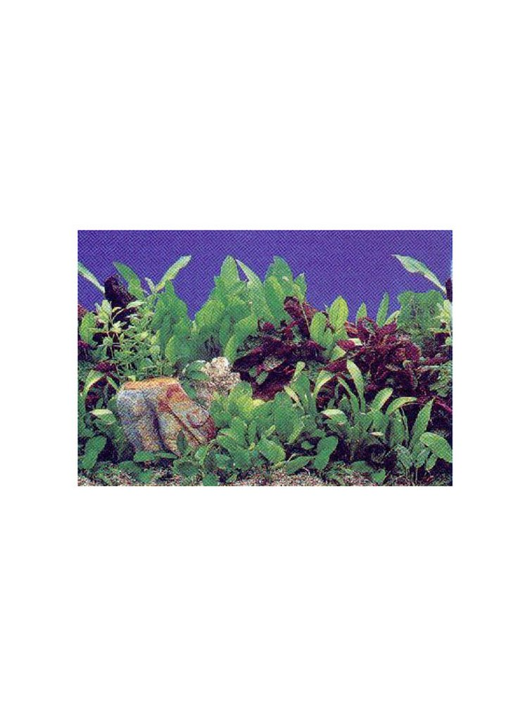 Sfondo piante (prezzo al metro)