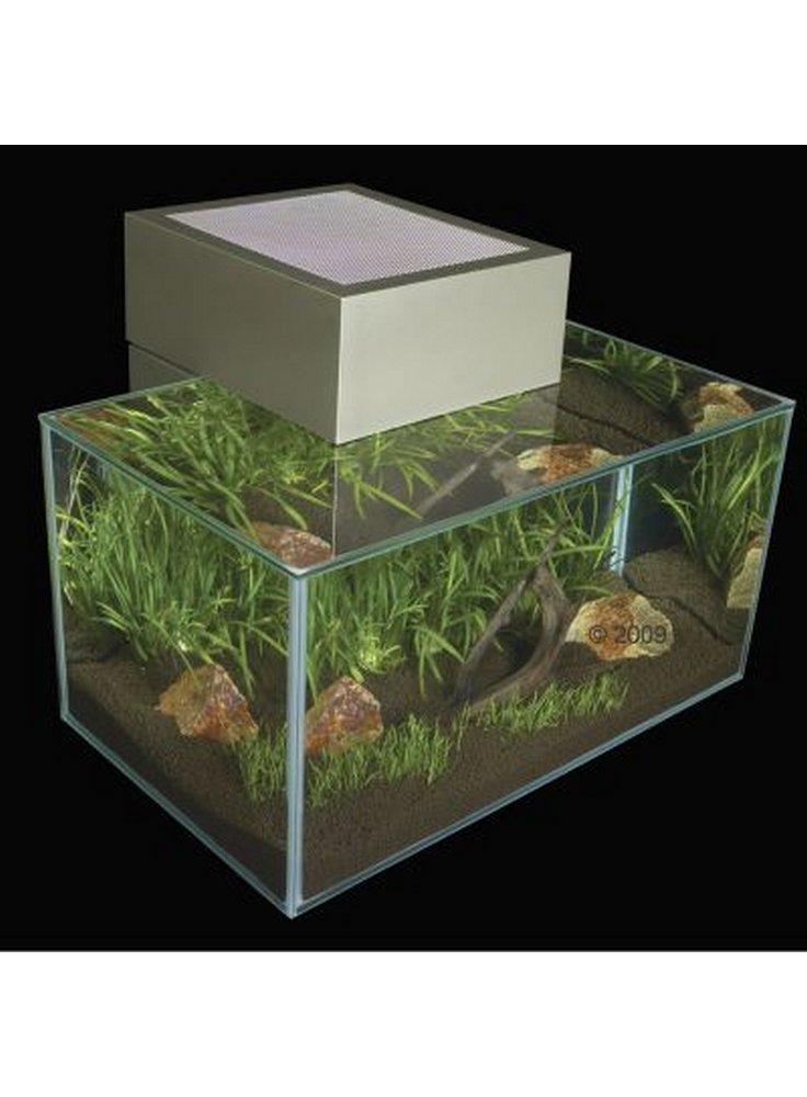 Design acquario edge askoll
