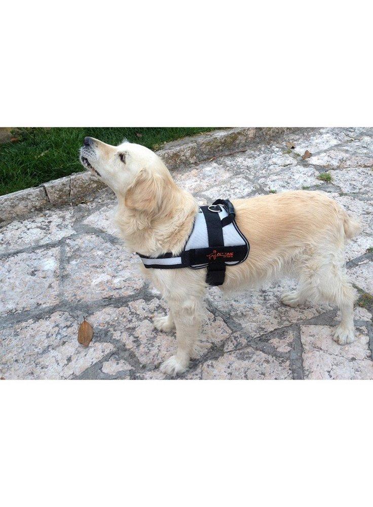 Pettorina per cani Heavy Track