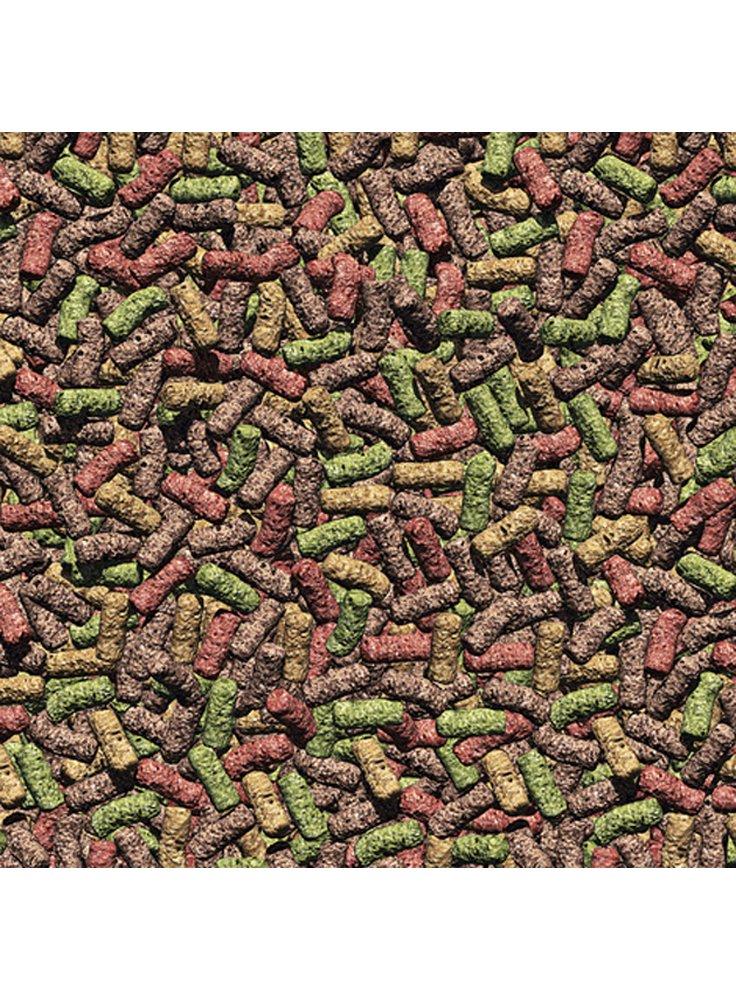 Jbl propond all seasons m mangime in pellets completo per for Laghetto per pesci