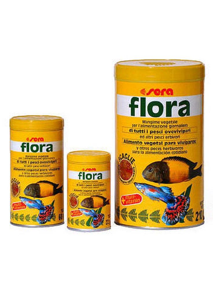 FLORA 1000 ml