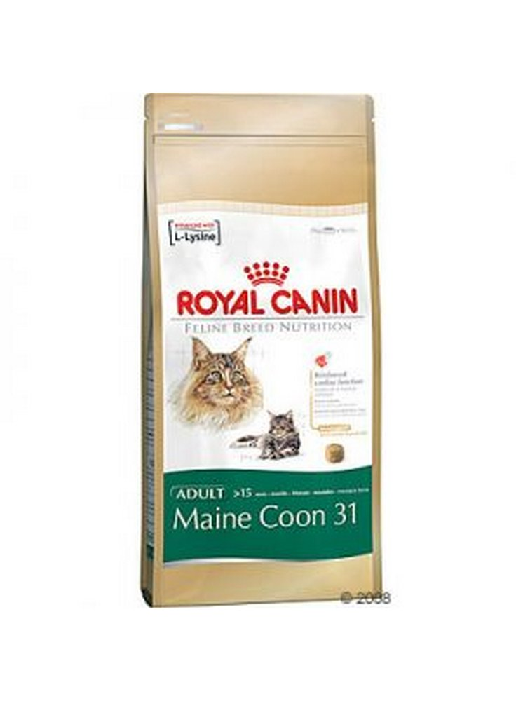 cibo per gatti main coon maine coon 31 royal canin royal canin. Black Bedroom Furniture Sets. Home Design Ideas