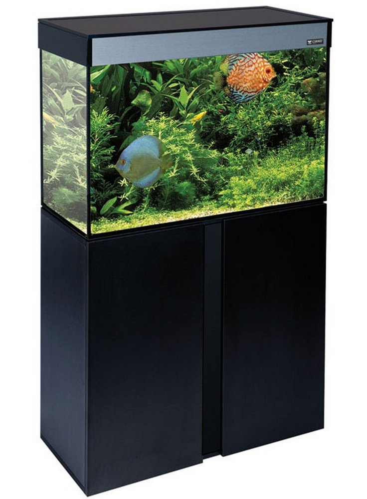 Acquario emotions 80 askoll 78x37x56 128 lt askoll for Pompa per acquario 100 litri