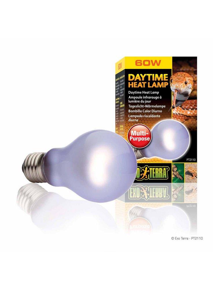 Daytime_Heat_Lamp