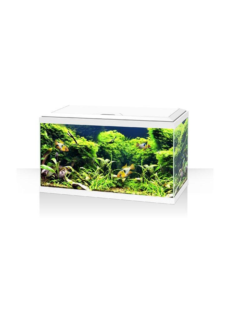 Acquario ambiente aqua 60 LED bianco o nero