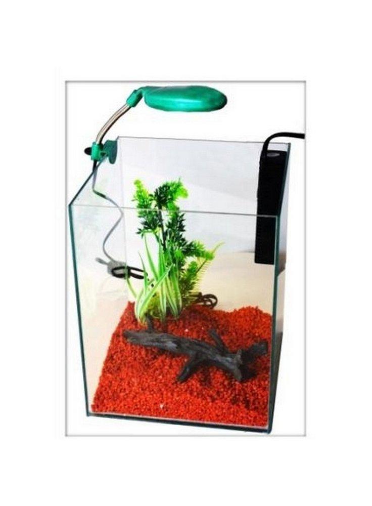 Acquario per caridine piccolo per acqua dolce nanokubus for Acquario per tartarughe con filtro