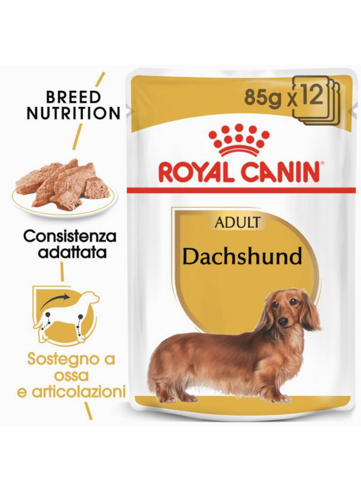 Bassotto DACHSHUND umido Royal Canin 12x85 gr