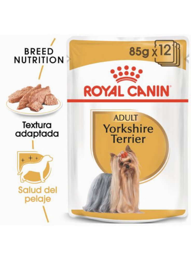 Yorkshire Terrier umido Royal Canin 12x85 gr
