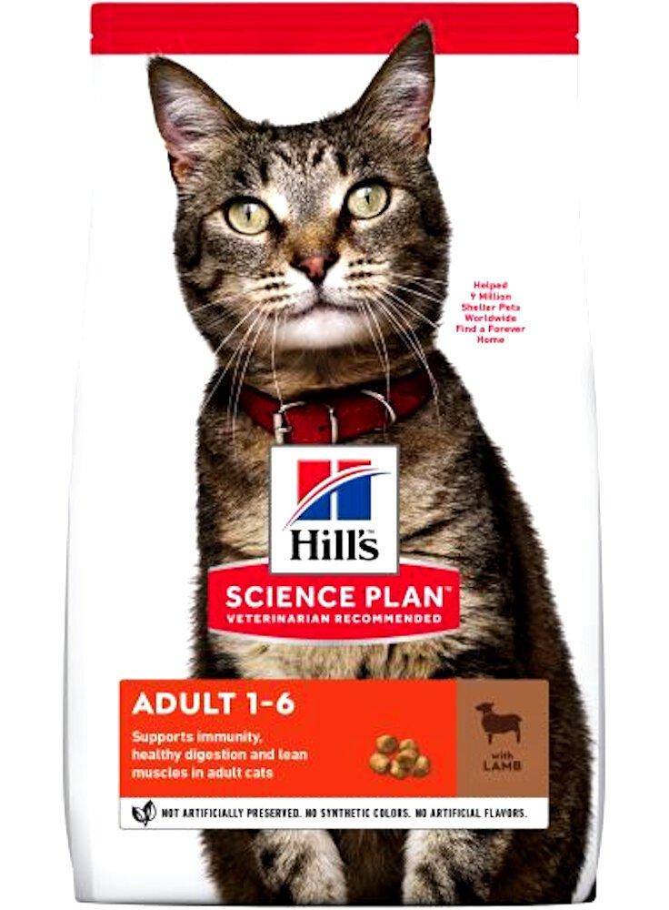 Hill's Gatti mangime alimento per gatti con adulti Agnello