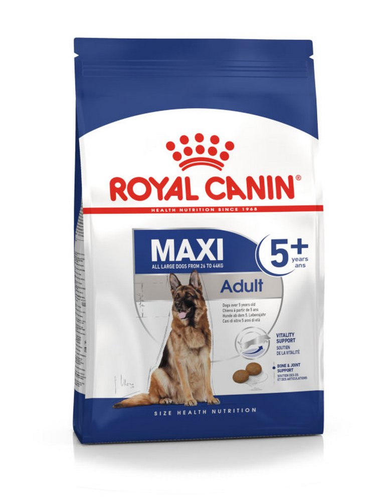 Maxi Adult 5+ cane Royal canin