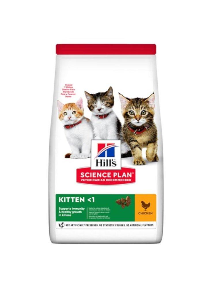07153814_hills-kitten-ckn