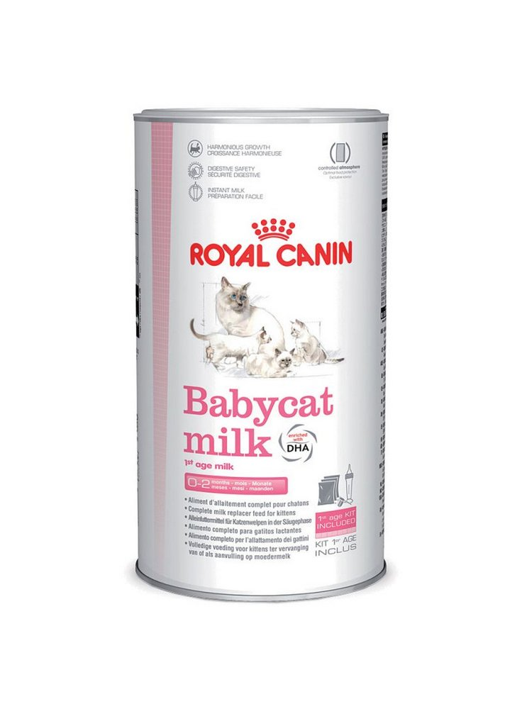 First Age Babycat Milk gatto Royal Canin 300 gr
