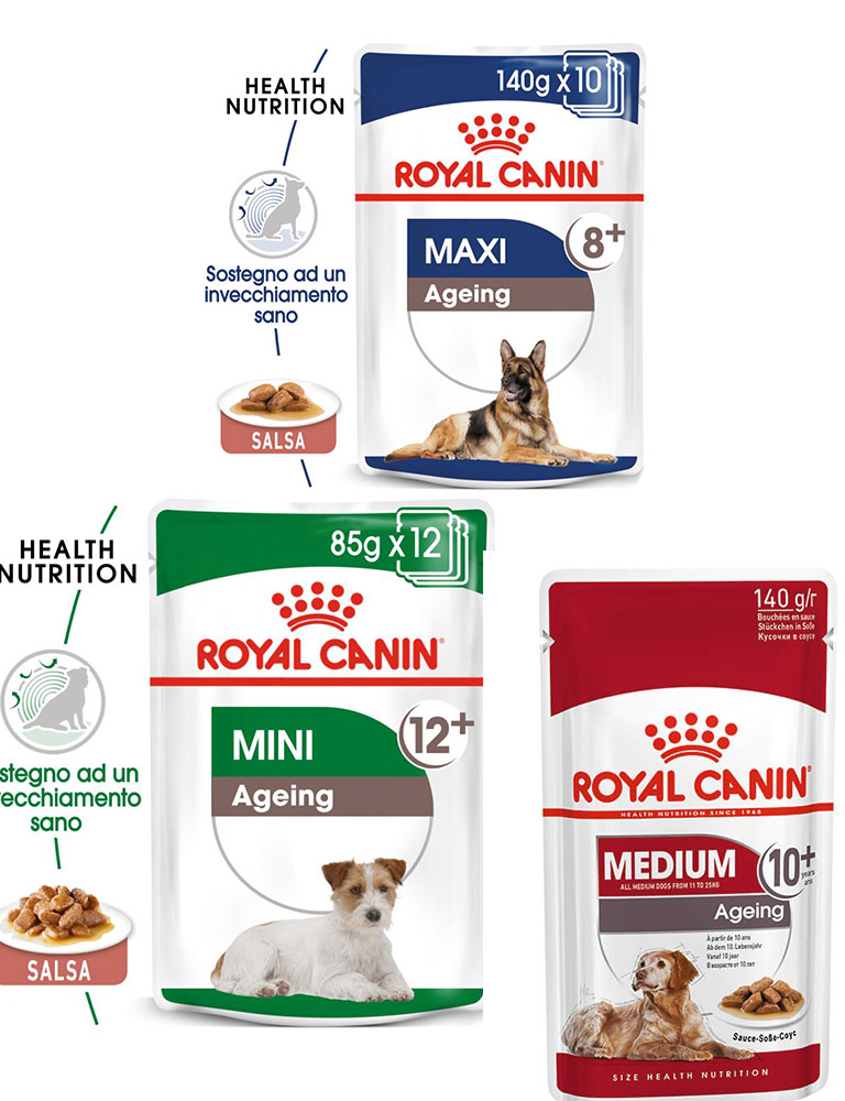 Ageing buste cane Royal Canin