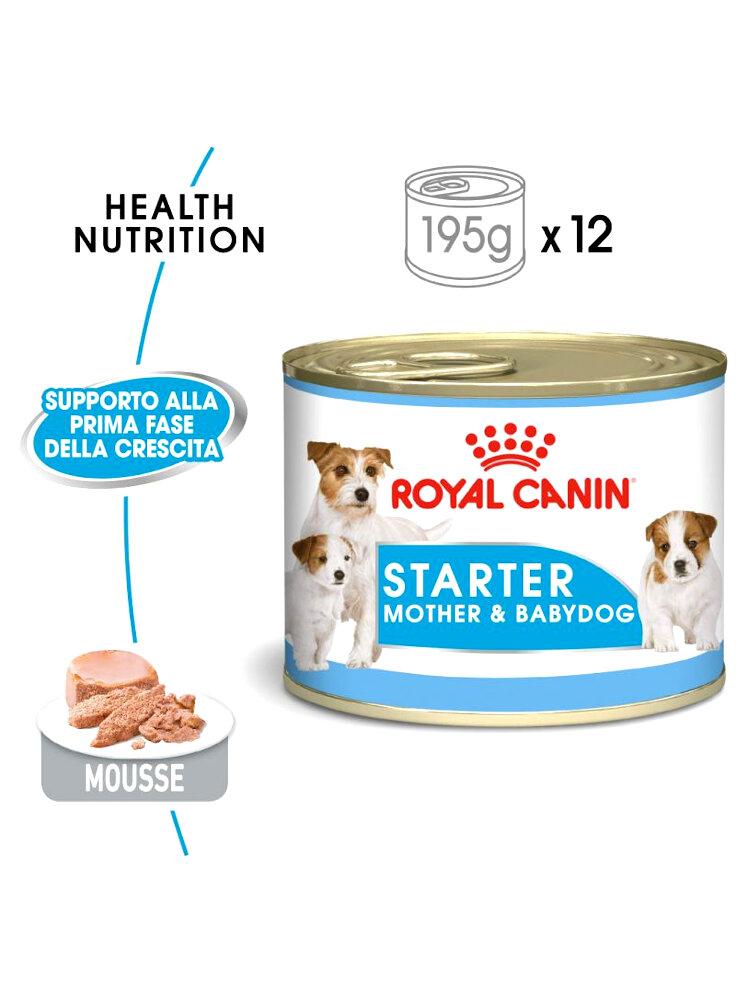 Starter mousse cane Royal canin 195 gr