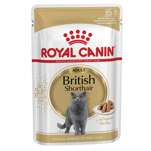 British Shorthair buste Royal Canin 12x85 gr