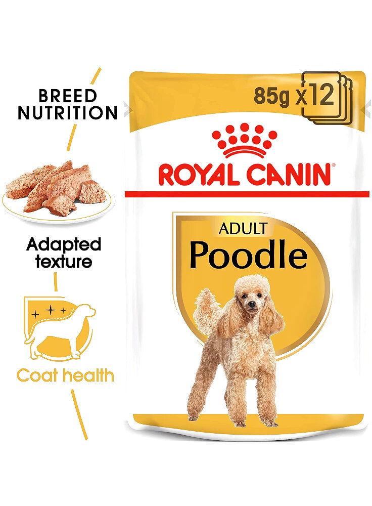 Barboncino POODLE umido Royal Canin 12x85 gr