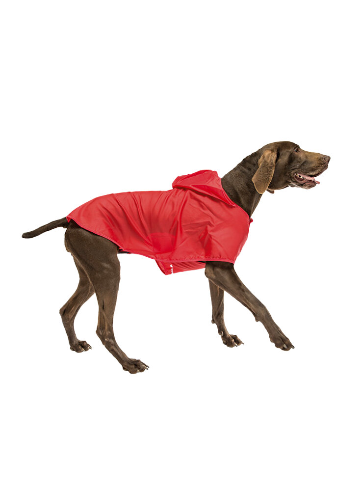 Cappottini per Cani Sailor Red Mantel