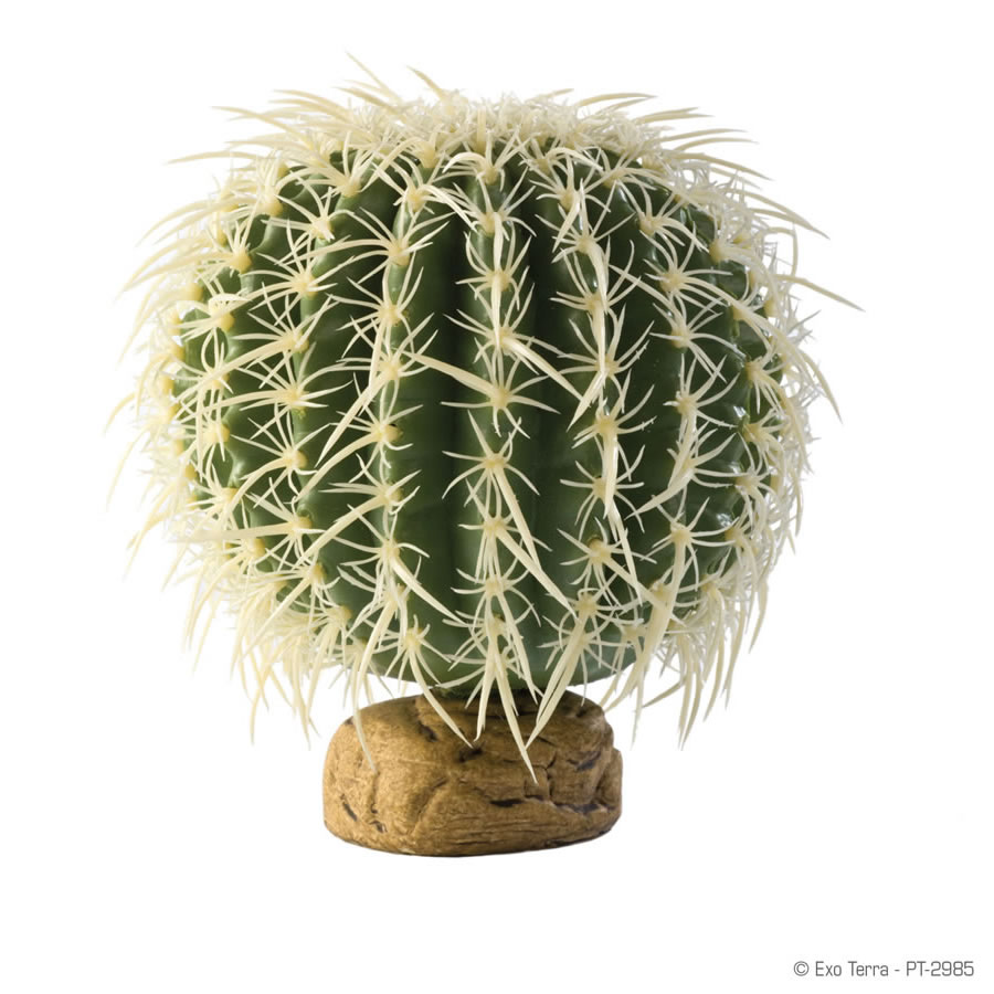 Exoterra barrel cactus decorazione per terrari desertici