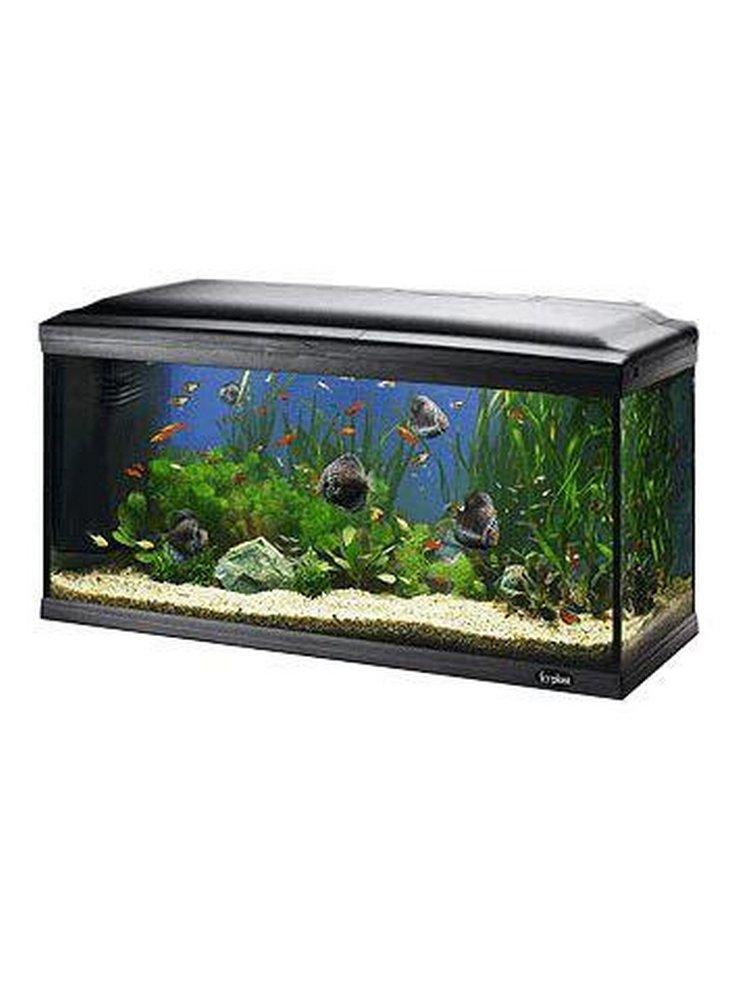 Acquario cayman 110 professional 230 litri