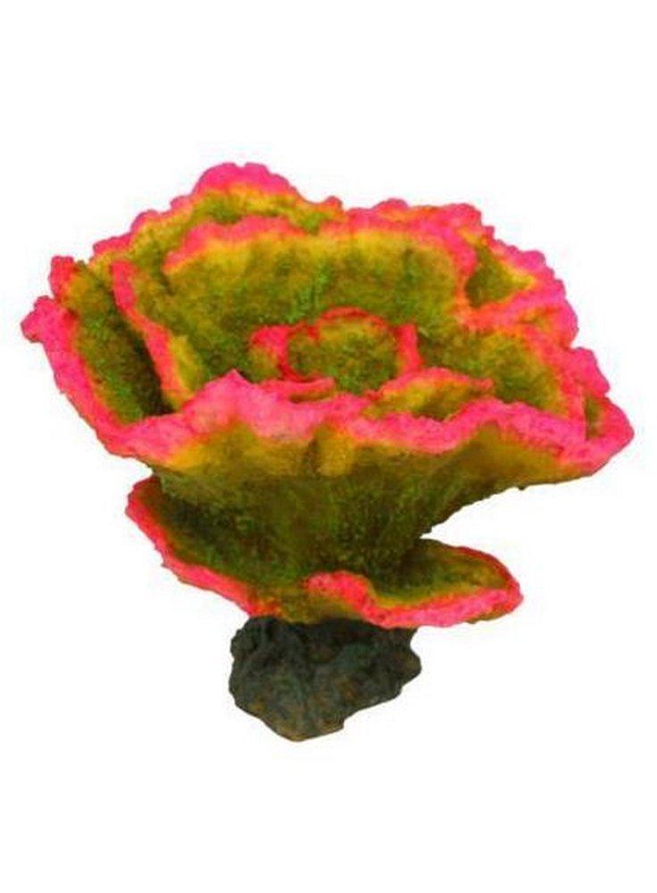 Haquoss decorazione corallo finto Montipora