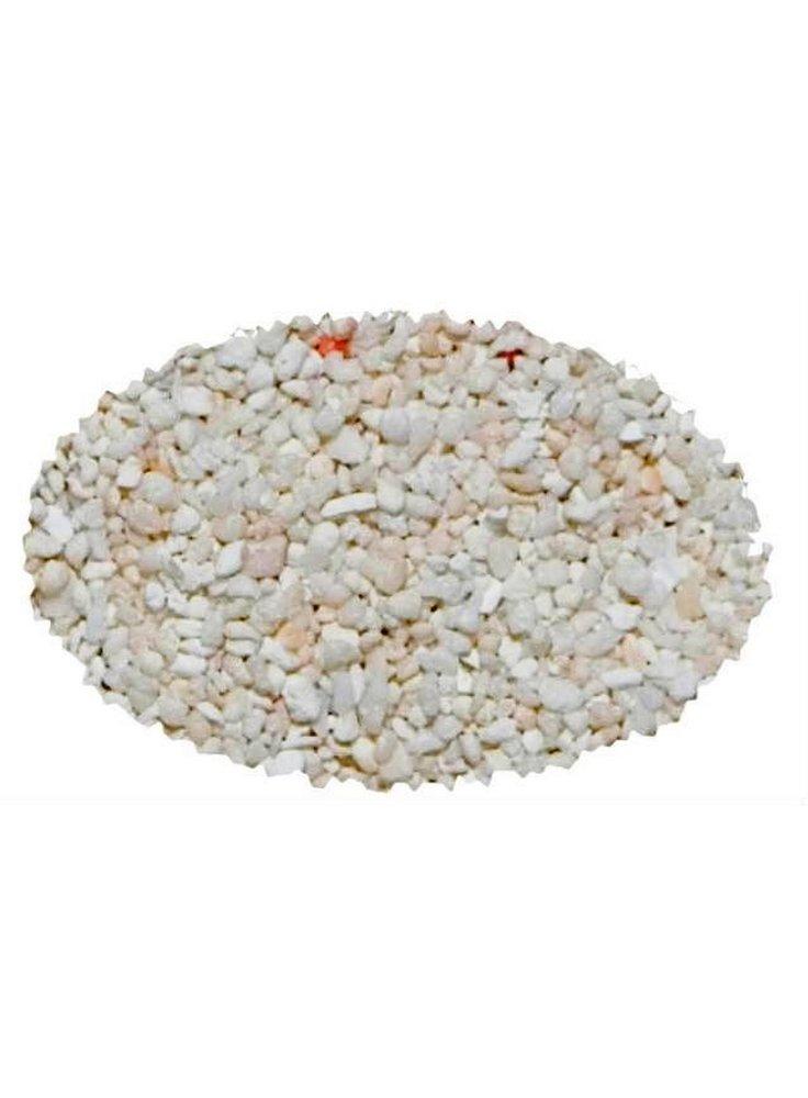 Sabbia corallina fine per acquario marino