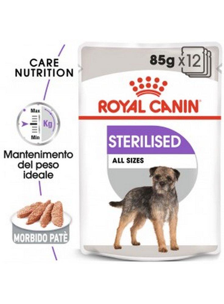 Sterilized umido cane Royal Canin 12x85 loaf