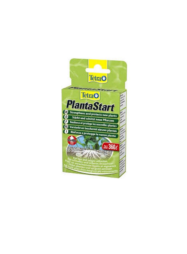 Tetra Planta start 12tb