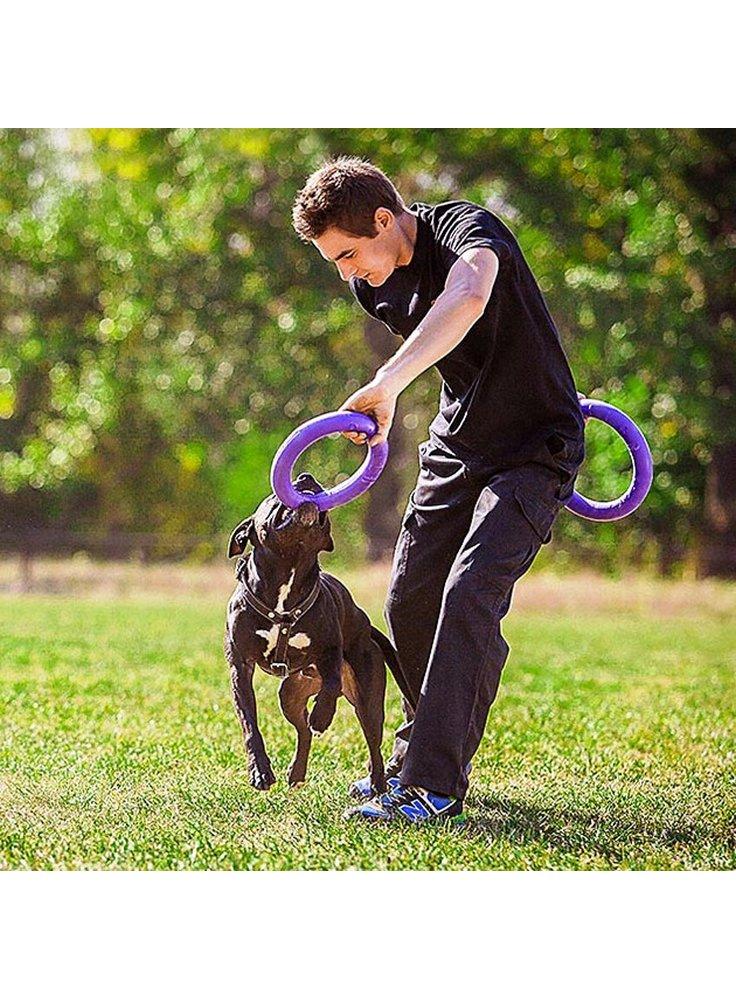 gioco-per-cani
