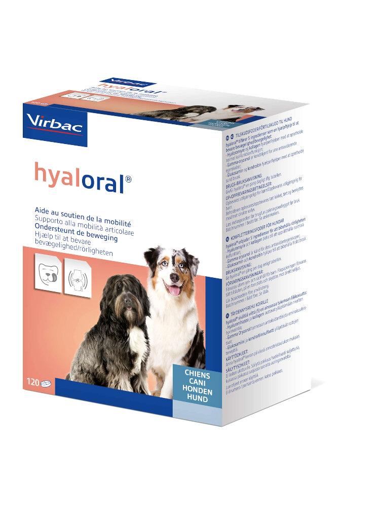 HYALORAL integratore per la mobilità articolare del cane