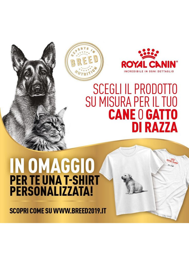 Royal Canin Breed 2019