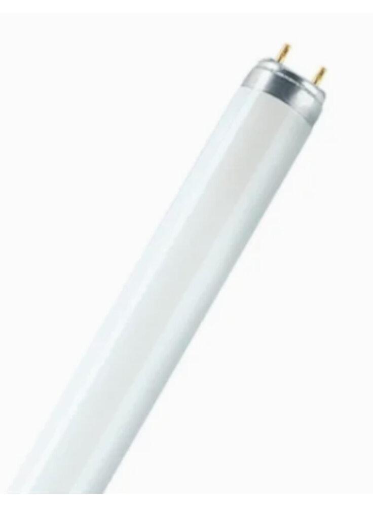 Lampada per acquario degenbao T8 10000k 38/40W 105CM