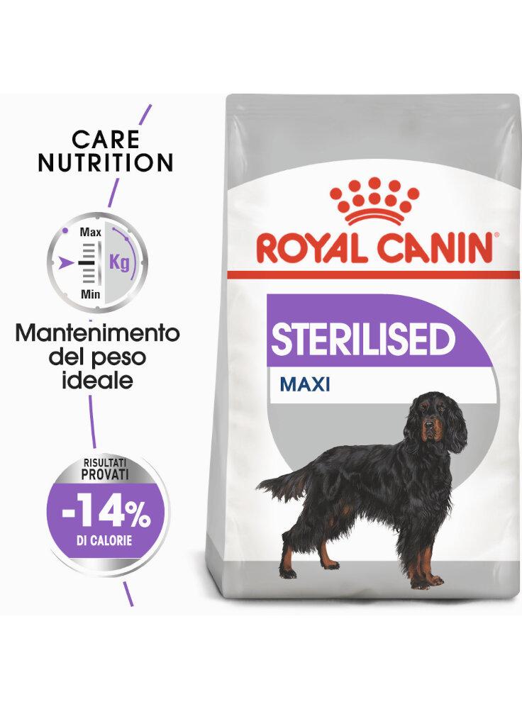 maxi-sterilised-cane-royal-canin-9-kg