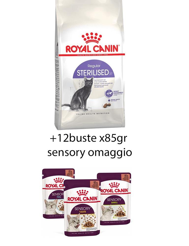 Sterilised gatto Royal Canin 10 kg + 12 buste sensory umido 85gr omaggio