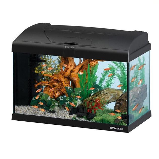 Acquario capri 50 ferplast LED 40lt con allestimento