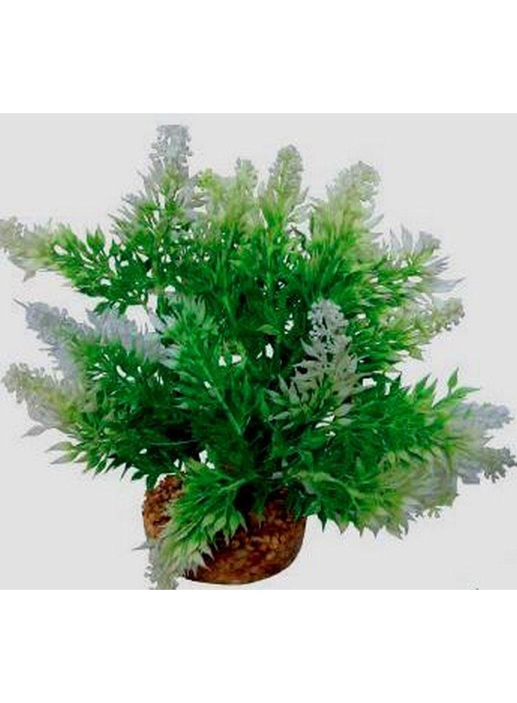 Pianta decorativa per acquario con base phytos 11 cm 18
