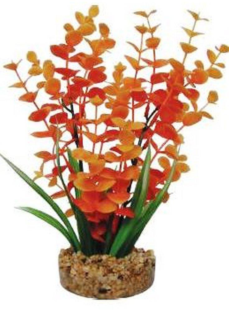 Pianta decorativa per acquario con base phytos 12 cm 18