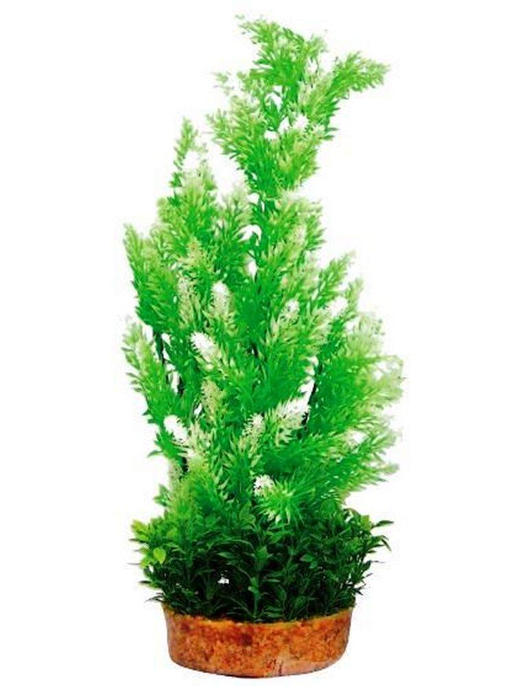 Pianta decorativa per acquario con base phytos 6 cm 38