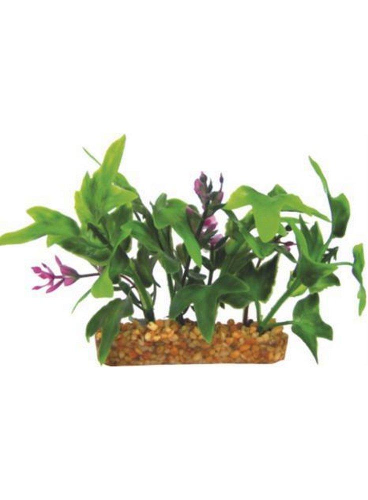 Pianta decorativa per acquario con base phytos 35 cm 9