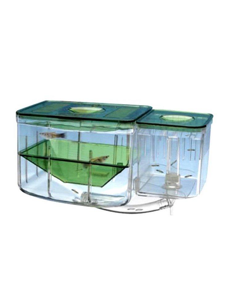 Sala Parto Guppy : Sala parto con sistema circolazione acqua petingros