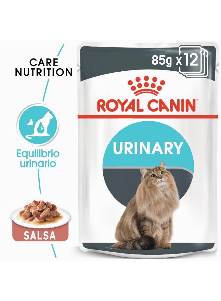 Urinary Care buste salsa gatto Royal Canin 12x85 gr
