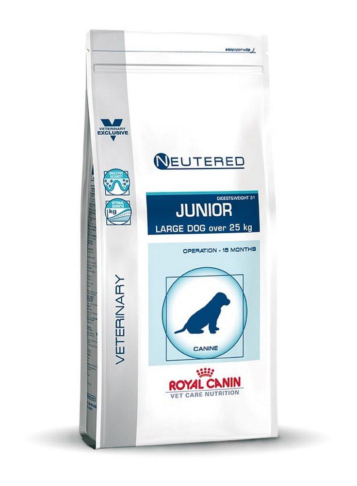 Neutered Junior Large cane Royal Canin
