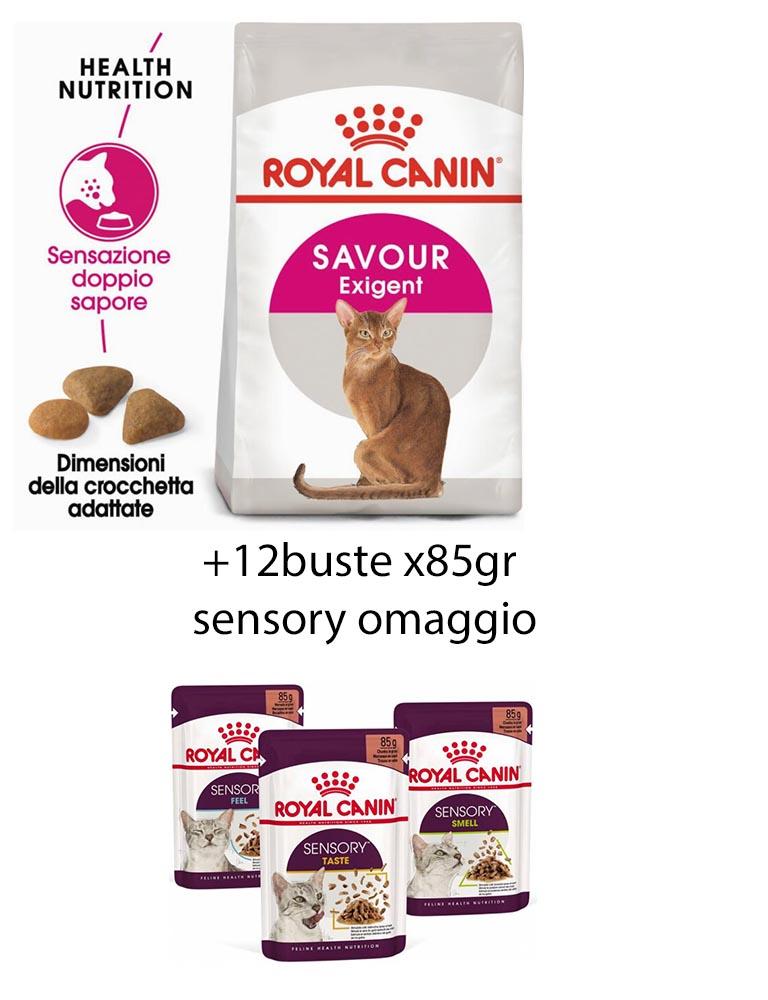Savour Exigent gatto Royal Canin 10Kg +12 buste sensory 85gr omaggio