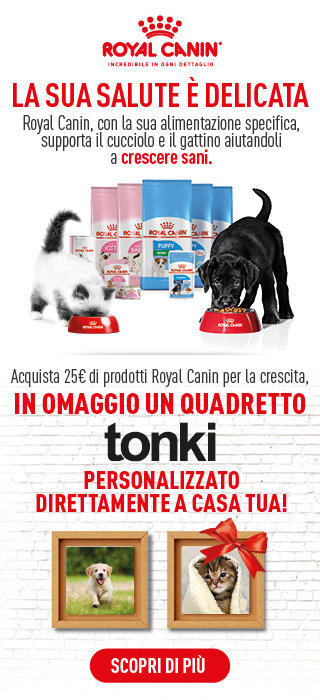 royal canin tonki
