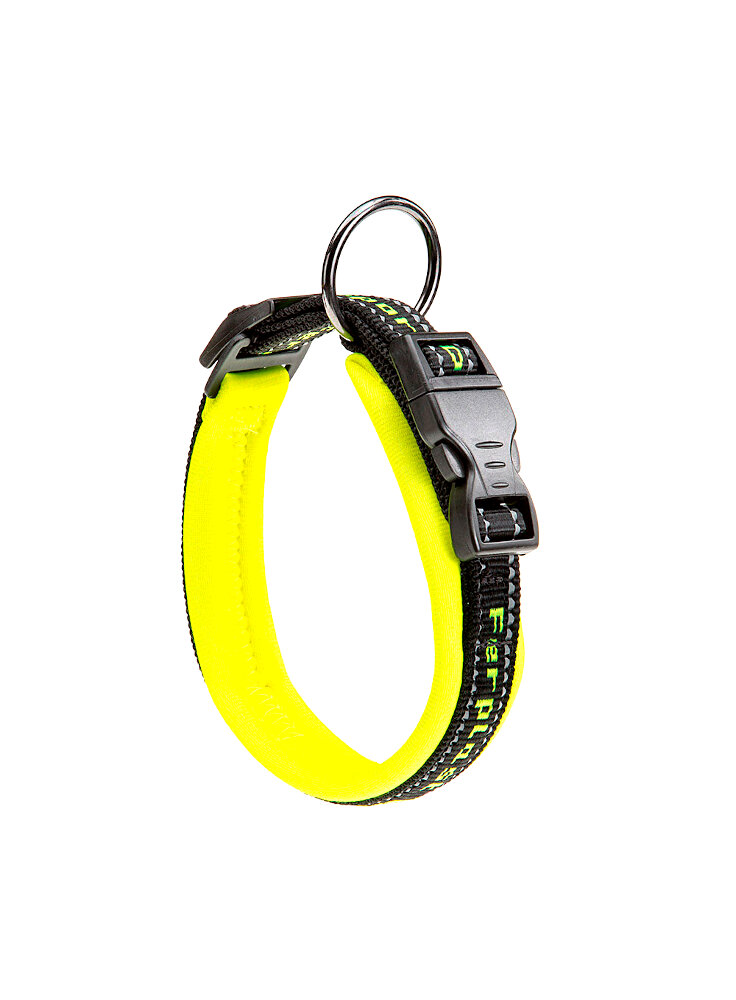 sport-dog-c15-35-giallo-coll