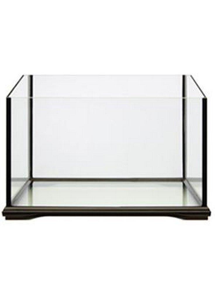Tartarughiera in vetro bella vasca da allestire petingros for Filtro per tartarughiera