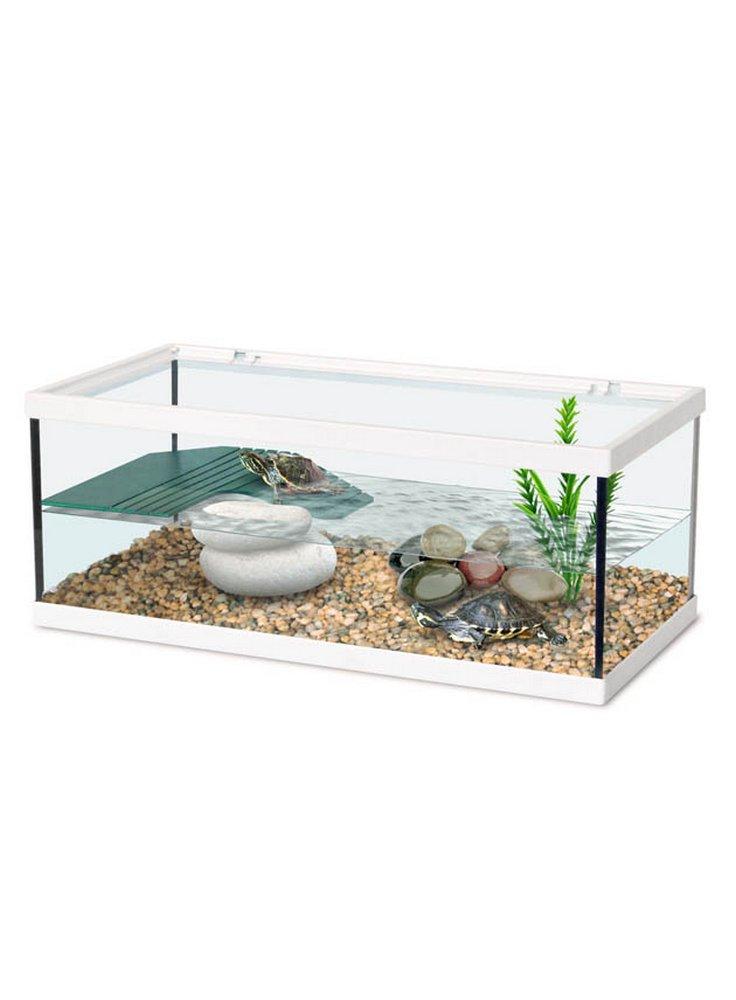 Tartarughiere e isole filtro for Miglior filtro esterno per tartarughe